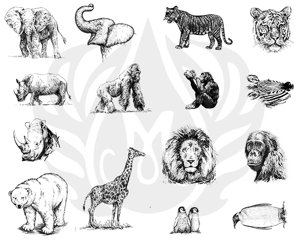 Mayco Designer Silkscreen DSS-136 Zoo Animals