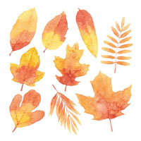 Leaves Decals