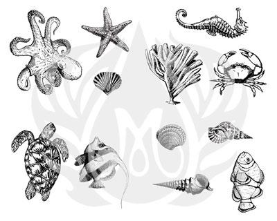 Mayco Designer Silkscreen DSS-102 Sea Life