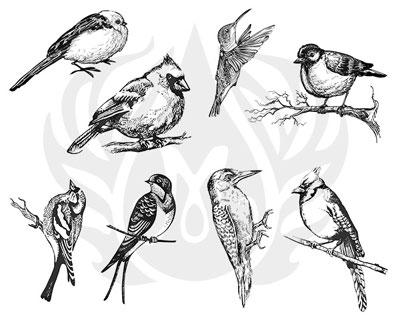 Mayco Designer Silkscreen DSS-108 Aviary- Small Birds
