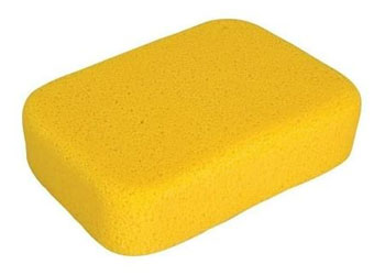 5 x 6.5 inch Sponge