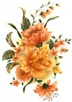 Caroline Floral