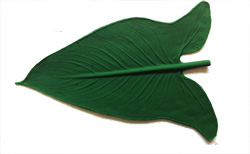 Arrowhead 12 inch