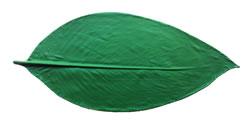 Canna Leaf Pattern 16 inch