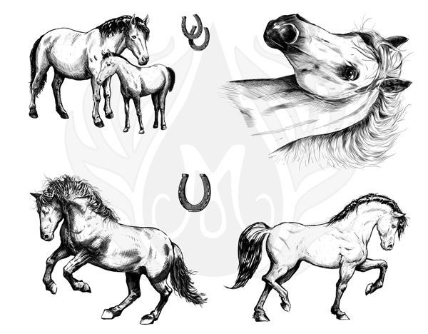 Mayco Designer Silkscreen DSS-151 Horses