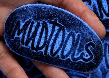 Sherrill Clean Up Mudsponge Blue