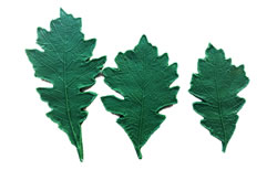 Small Oak Leaf Pattern Set 5.5/4.5/4 inch