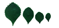 Strawberry Leaf Pattern Set 4/3/2/1 inch