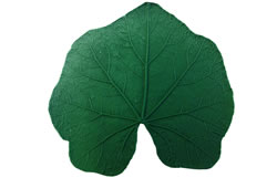 Sunflower Leaf Pattern - 10.5 inch